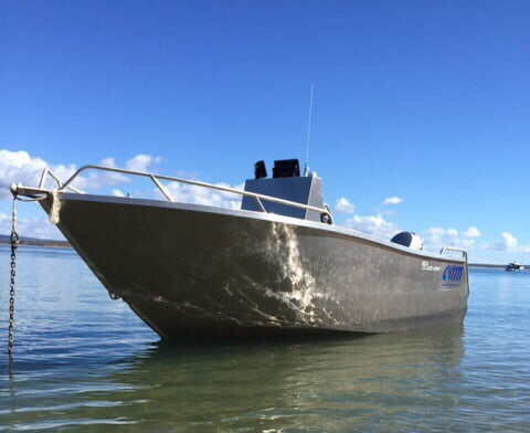 Testimonials amm are leaders in custom plate alloy for Fishing spots near me no boat